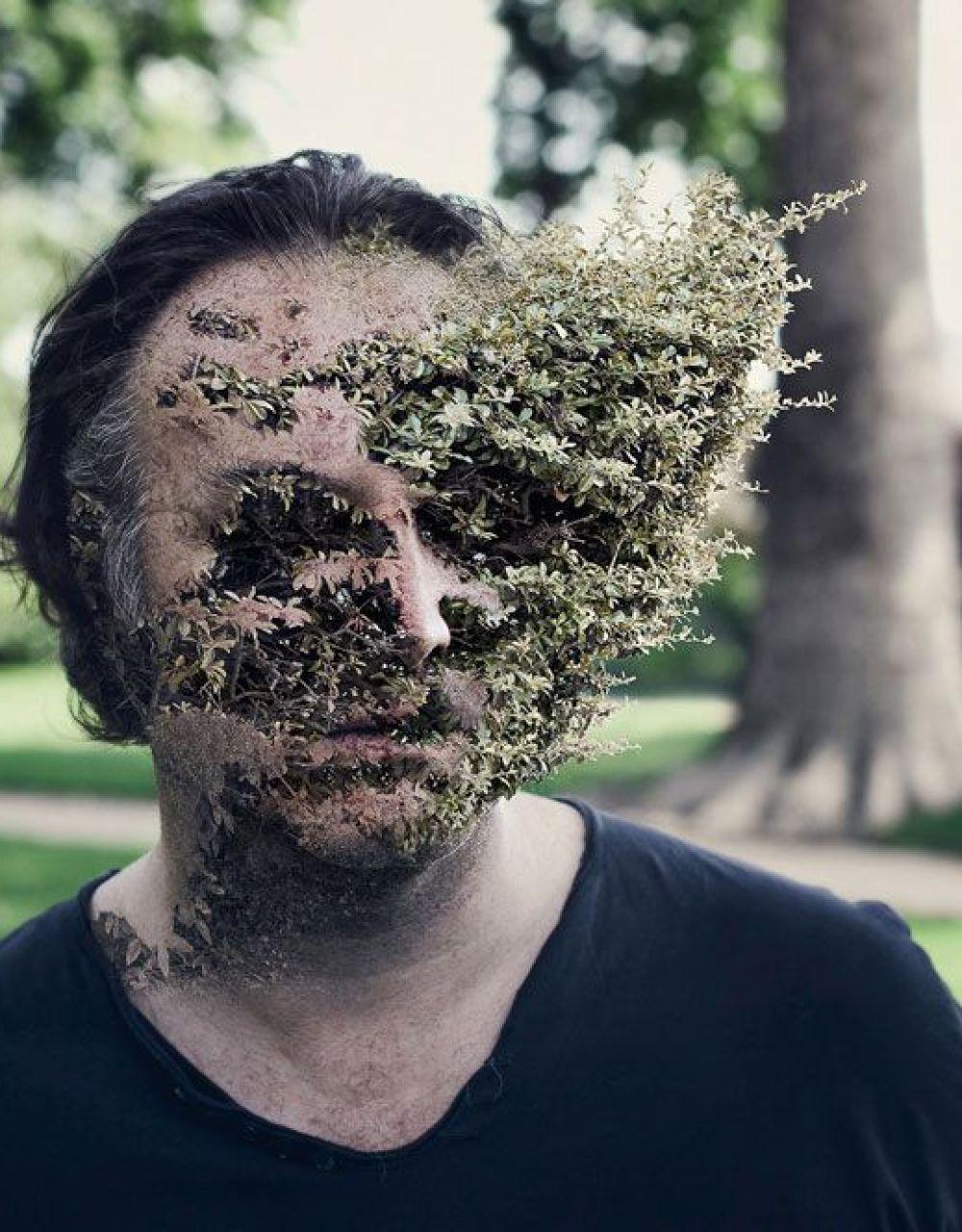 Treebeard (3)