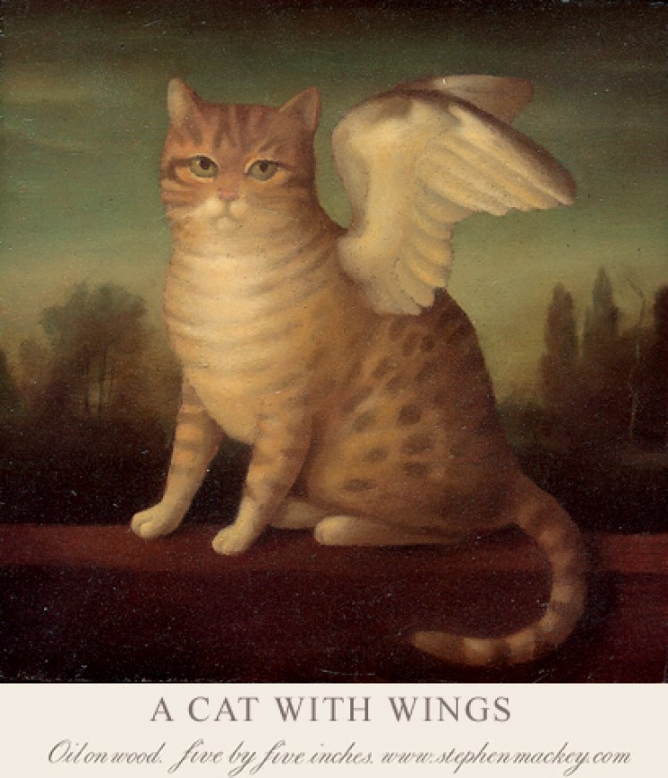 acatwithwings