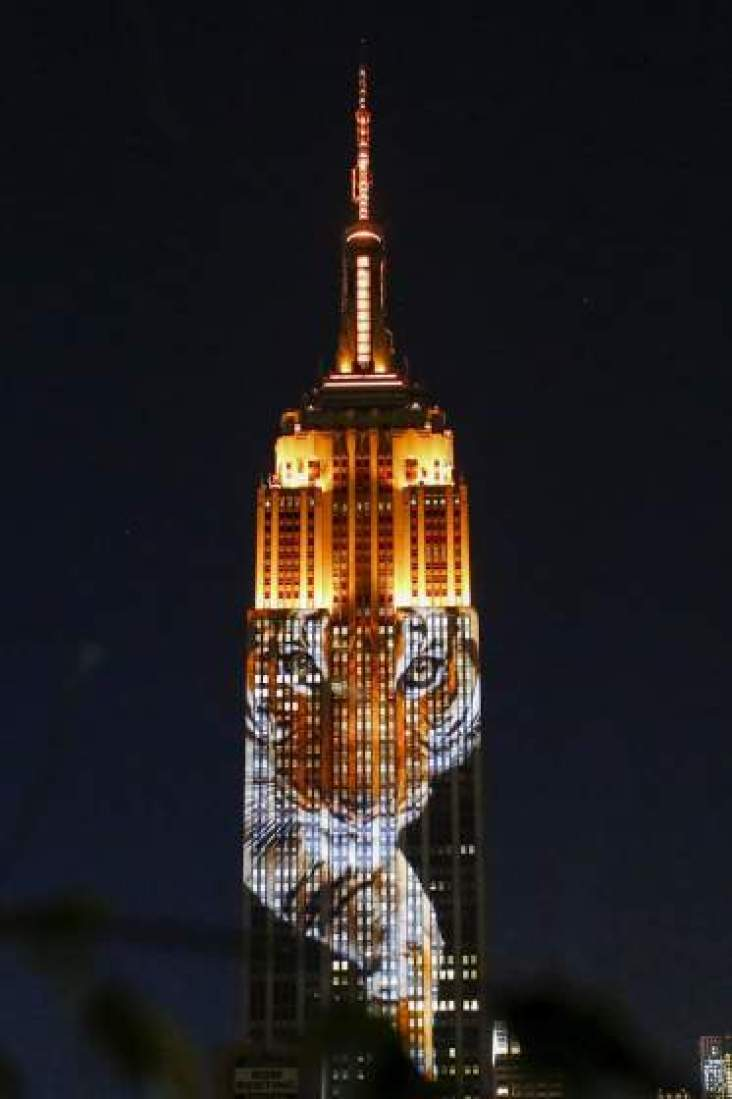 An image of an animal is projected onto the Empire State Building as part of an endangered species projection to raise awareness, in New York