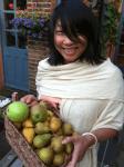 punnet-of-pears-curious-gardener