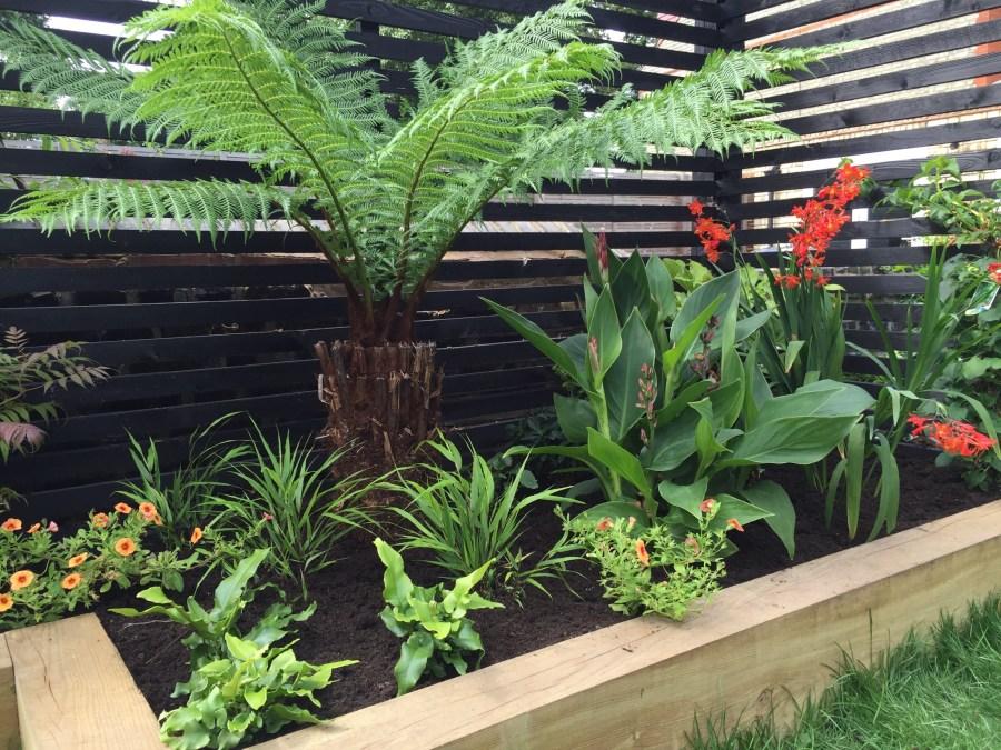 garden design crouch end london (26)