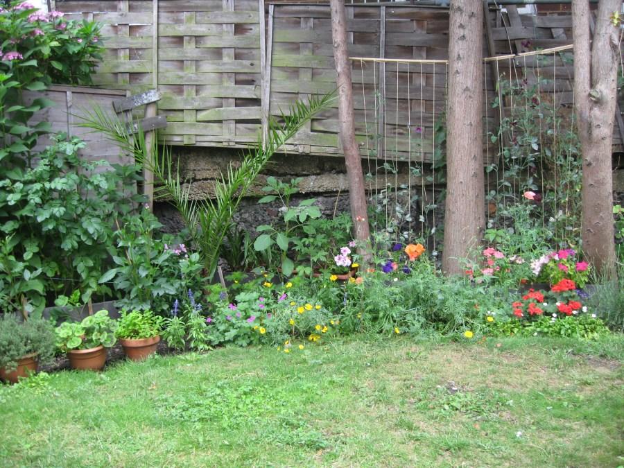 gardening in finsbury park london (9)