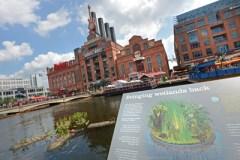 State approves revised wetlands fees for Inner Harbor restaurants