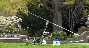 Small aircraft lands on Capitol lawn; pilot arrested