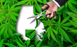 Will proposed zoning law block marijuana facilities in Baltimore County?