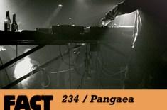 FACT 234 / Pangaea