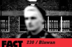 FACT 230 / Blawan