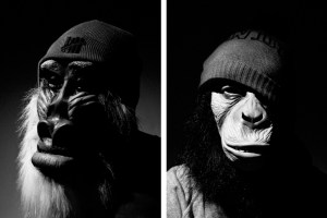 The Chimp Store Present 'Barnet Of The Apes'
