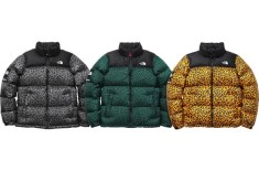 Supreme x The North Face Winter 2011
