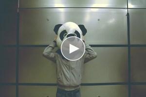 Video: Ifan Dafydd – Treehouse