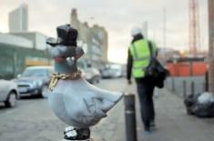VNA Magazine: Ronzo's Birdz