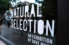 Recap: Dave White Natural Selection Exhibition Launch