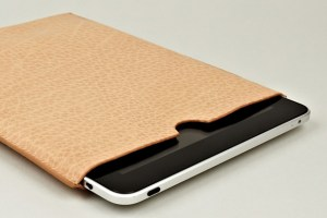 Acne Melanite iPad Case (Tan)