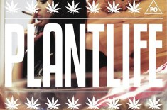 Download: Piff Gang – Plantlife