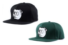 indcsn Bulldog snapback caps