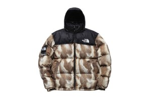 Supreme x The North Face AW13 Outerwear