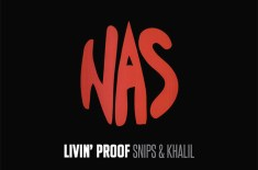 Livin' Proof presents 'Nas Illmatic 20 Mix' by Snips & Khalil