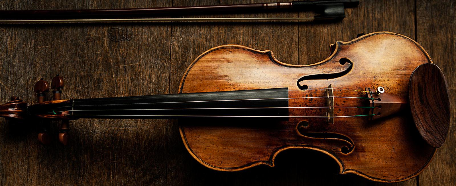 violin-rbp-website