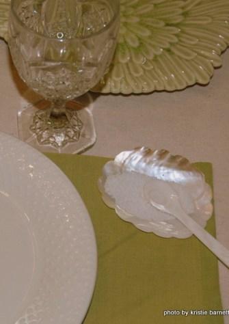 DSC 4473 1 Decorative Ideas for Seashells