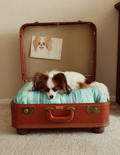 vintage luggage dogbed via feathersfreeseasandfishingtackle blogspot Clever Uses for Vintage Luggage