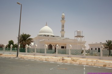 mosques 1101