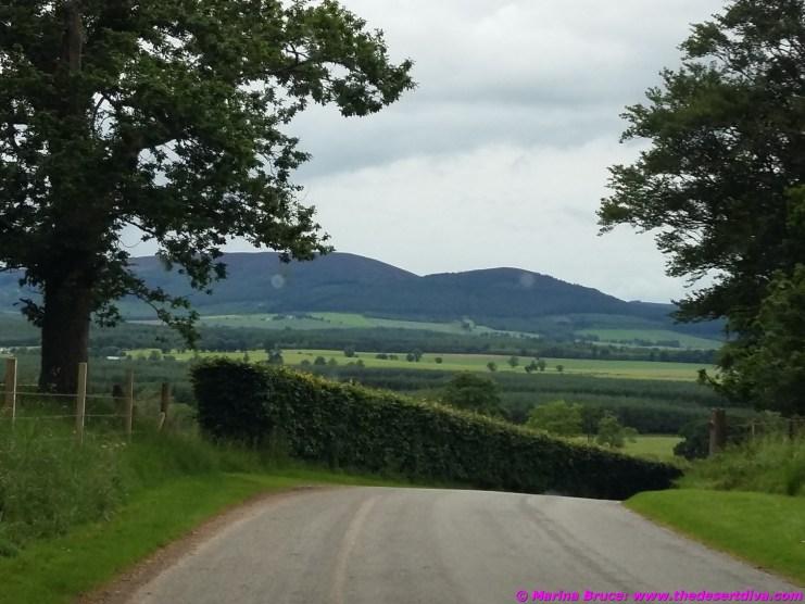 drivinginscotland18