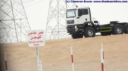 Special Camel Corridor