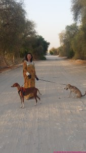walking with my dogs in my jalabaya - and desert boots (there's scorpions and snakes in the plantation!)