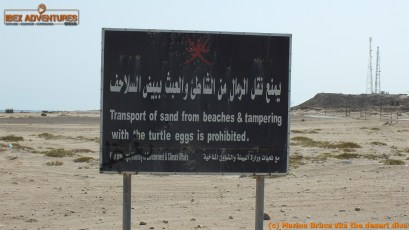 Maybe I should have got my car cleaned when I left here since I unwittingly transported about 2kg of sand!