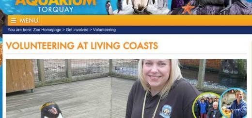 volunteering at living coasts
