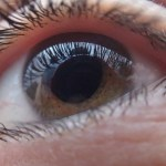 FDA Expands the Approved Use for Lucentis to Treat Diabetic Retinopathy in Patients with Diabetic Macular Edema