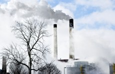 Pollution Affects Blood Sugar Levels and Cholesterol