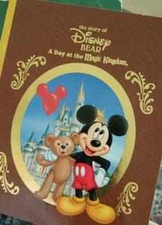 Disney Bear - TBT