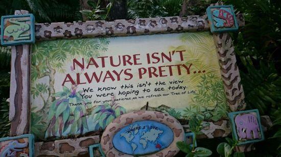nature-isnt-always-pretty-wordless-wednesday
