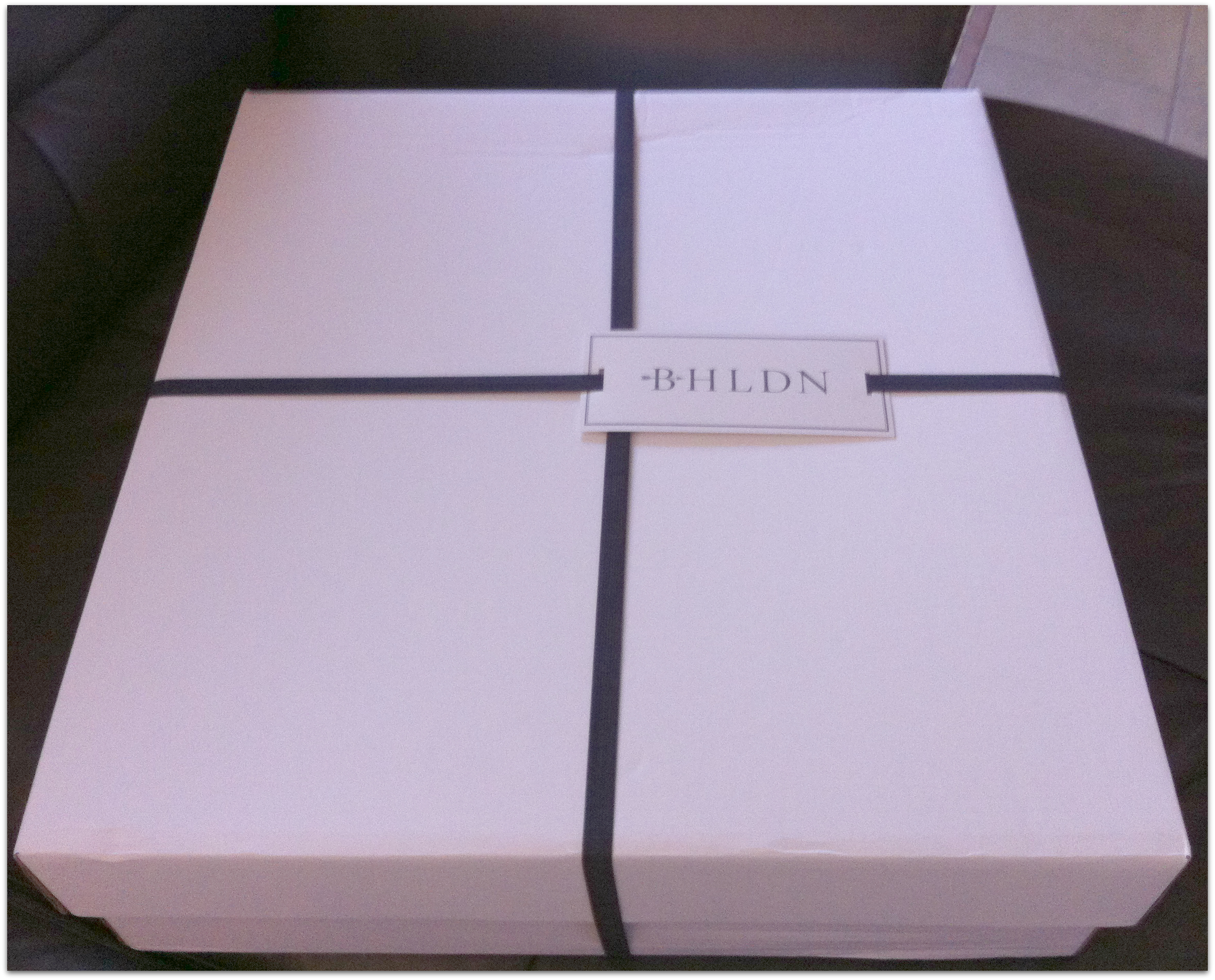 how not to buy a wedding dress wedding dress bag The beautiful packaging from BHLDN BHLDN Bag