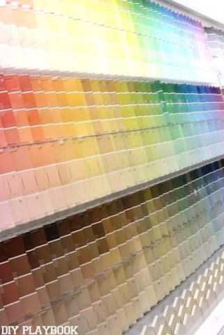 HGTV Paint swatches