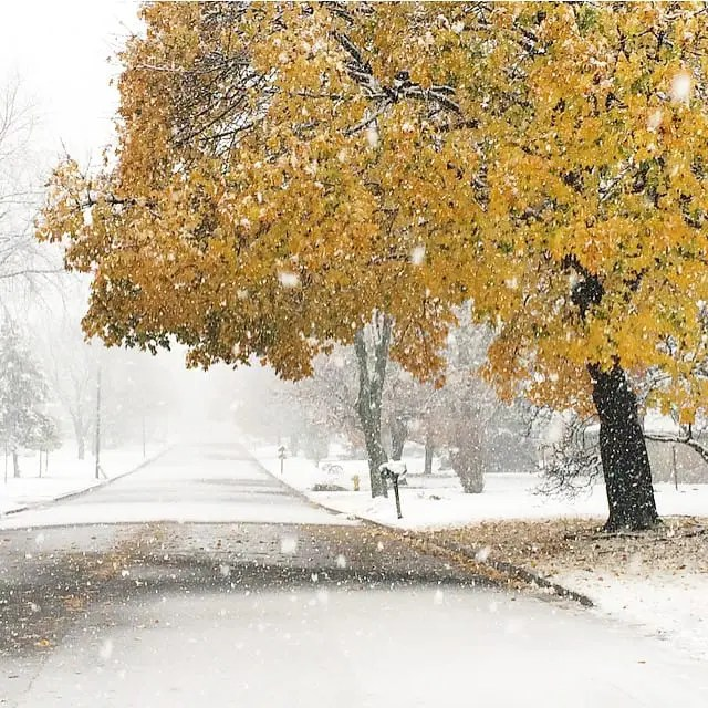 Snow in Fall November