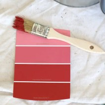 Christmas Card Paint Swatch