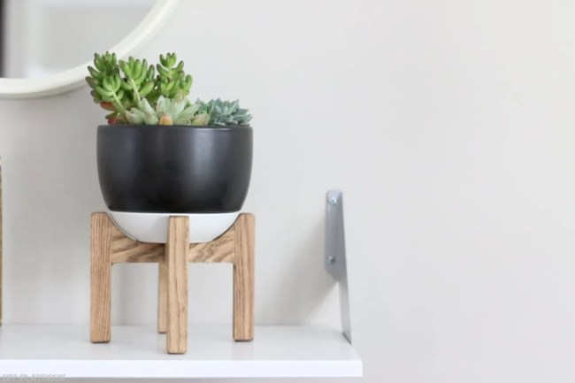 succulent_target_stand_plant-8