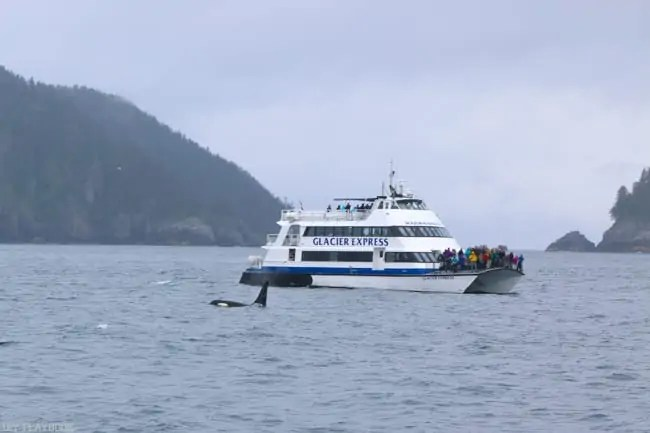 Alaska_travel-36