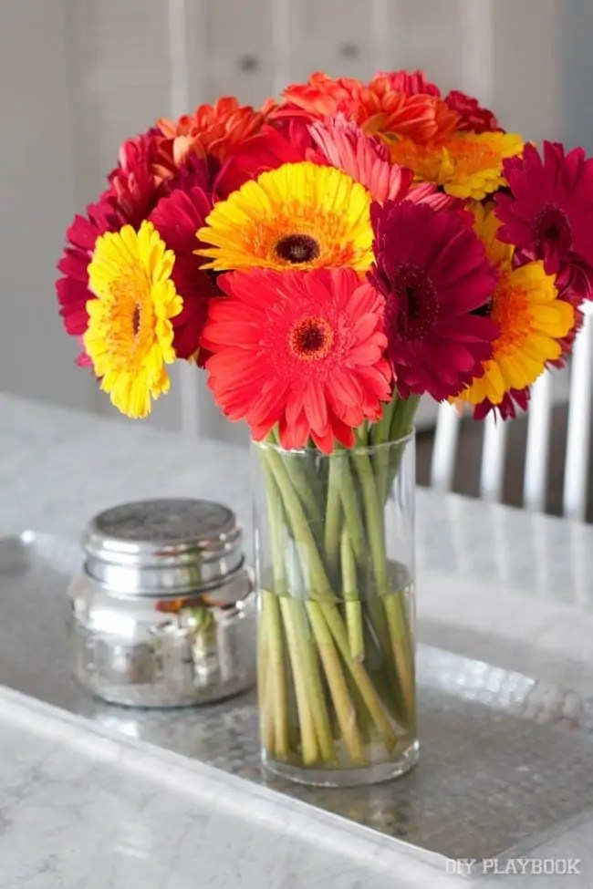 colorful-flowers-fall