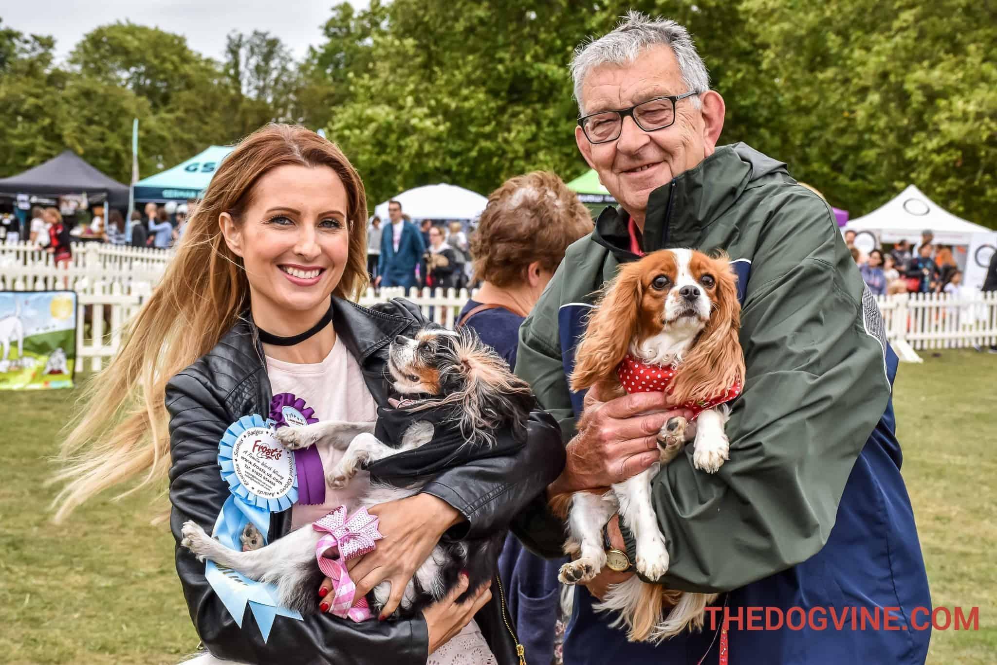 Ex Puppy Farm Rescue Dogs