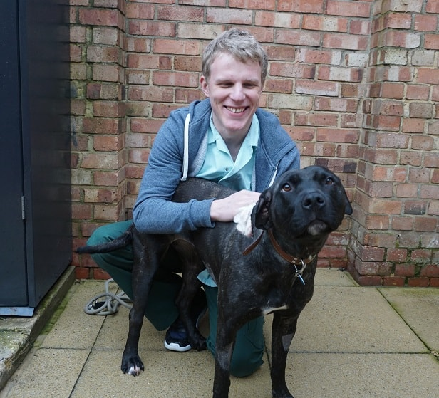 Abbey with The Mayhew Student Veterinary Nurse, Graham Cook