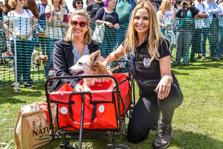 The Great Hampstead Bark Off 2017 Judges_0965