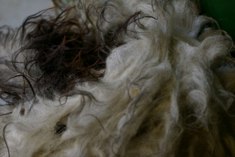 Scadder: very coarse sheep fleece, with a sort of mane, very long guard hairs, strong... characterful! And not for knitting lingerie.