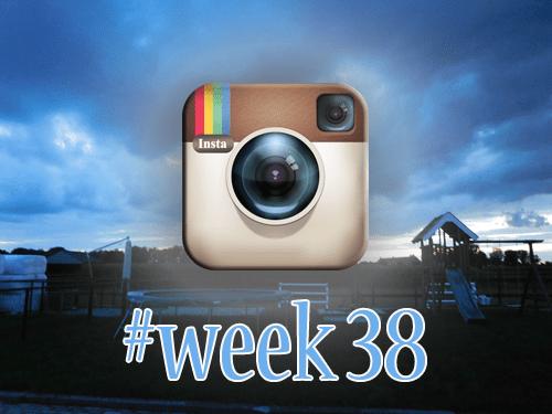 week 38