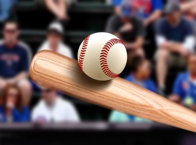 Tampa Bay Baseball outings for seniors