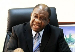 Professor Chinedu Nebo, Minister of Power