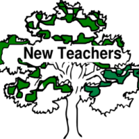 The New Teacher's Survival Guide: 5 Crucial Habits