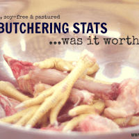 Pastured Chicken Stats and Butchering, 2013.